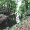 Afbeelding van Autospeurtocht 'Landgoederenroute Achterhoek'